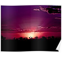 Think Pink - Port Hedland, Western Australia Poster