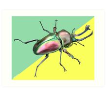 Rainbow Stag Canvas Print  Art Print