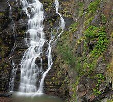 Margaret Falls by Travis Easton