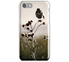Carpe Diem... iPhone Case/Skin