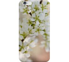 Found: Blossom Happy-ness iPhone Case/Skin