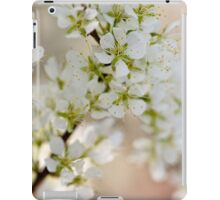 Found: Blossom Happy-ness iPad Case/Skin