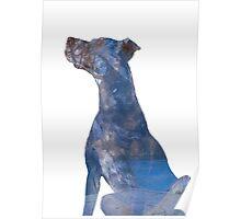 Little Dog Blue Poster