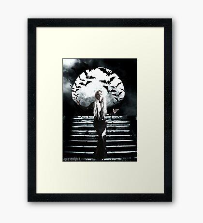 Nocturna Framed Print