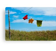 Dancing In The Wind Canvas Print