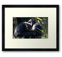 'Behavior Shots' Framed Print