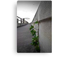 Concrete Sky 2 Canvas Print