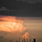 Concrete Sky 37 by Camilo Bonilla