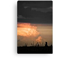 Concrete Sky 37 Canvas Print