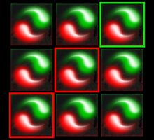 Zoom 9 (Red Light, Green Light) 2001 by stephenwho