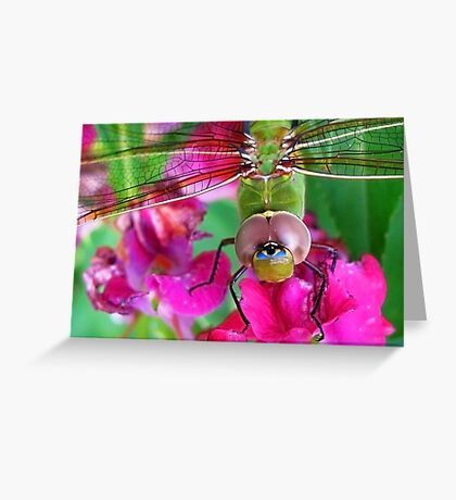 I Have My EYE on you 2 Greeting Card