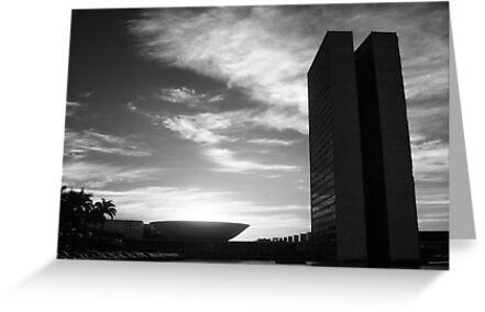 Brasilia by Nayko