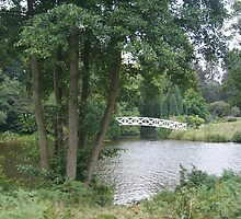 Bridge on the Riverside  by tezi12