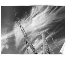 Desert Clouds Poster