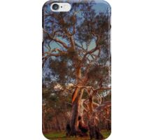 River Red Gums iPhone Case/Skin
