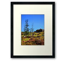 nature NI Framed Print