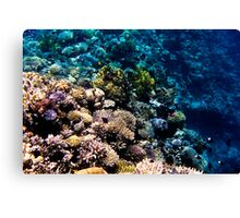 Red Sea 414  Canvas Print