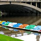 Colourful boats of the Torrens by Ali Brown