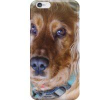Golden Cocker Spaniel iPhone Case/Skin