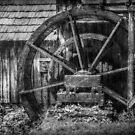 Mabry's Water Wheel by Christine Annas