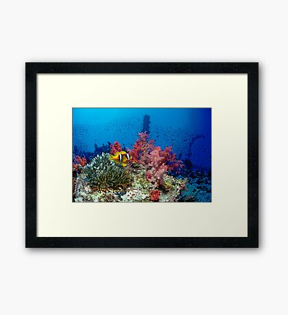 Big small world Framed Print