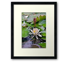UNIQUE BEAUTY Framed Print