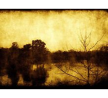 As Color Fades ©  Photographic Print
