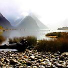 Milford Sound New Zealand by Di Harrison