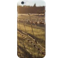 Dawn Frost iPhone Case/Skin
