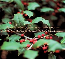 Smithsonian Holly by Melinda  Ison - Poor