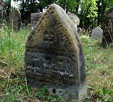 Jewish cemetery - Libochovice XIII. by Natas
