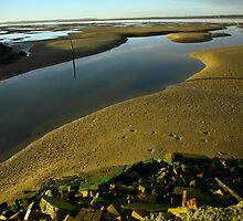 low tide. gippsland coast - victoria by tim buckley | bodhiimages