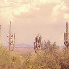 Desert Dream by lroof