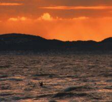 Surfing sunset Sticker