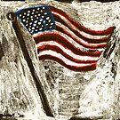 the American Flag by Danielle Cardenas