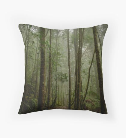 On the way to Philosophers falls Throw Pillow