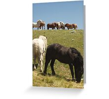 Eight is enough? Greeting Card