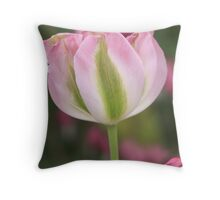 Single Tulip Throw Pillow