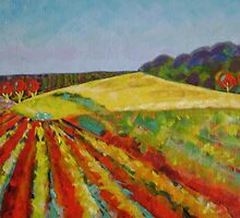 Peninsula Vineyard - Sold by Pauline Marlo-Monten