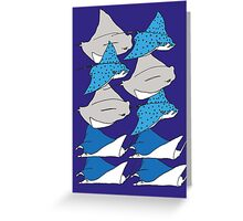 sting rays Greeting Card