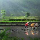 The Farmer by Antoine Dagobert