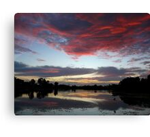 Nature's Paint Brush At Work Canvas Print