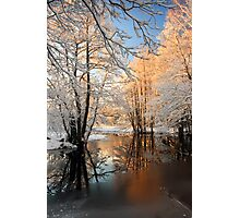 River landscape with hoarfrost trees Photographic Print