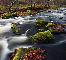 Small river cascade by Romeo Koitmäe