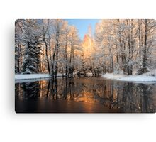 Reflection trees with sunlight Metal Print