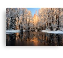 Reflection trees with sunlight Canvas Print