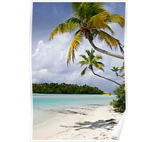 Cook Islands Palm - Aitutaki Poster