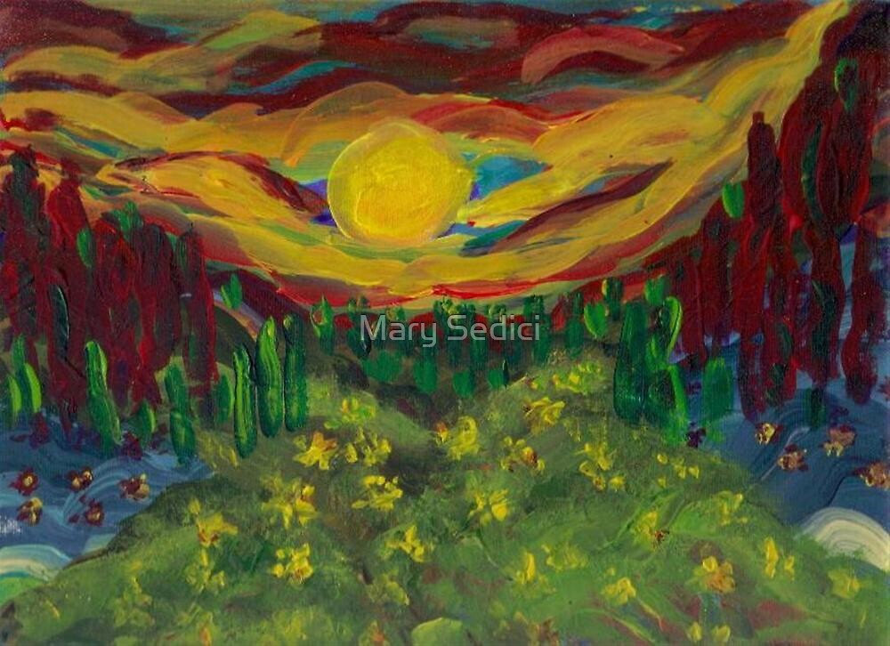 A Different Sunset  by Mary Sedici