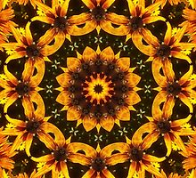 Designs on Susans by Monnie Ryan