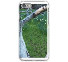 colouring winter iPhone Case/Skin